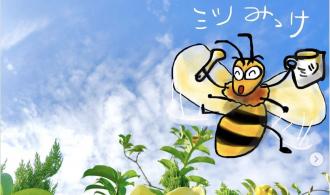 ミツバチ発見!!
