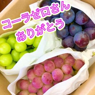 コーラゼロさんからのブドウ!!